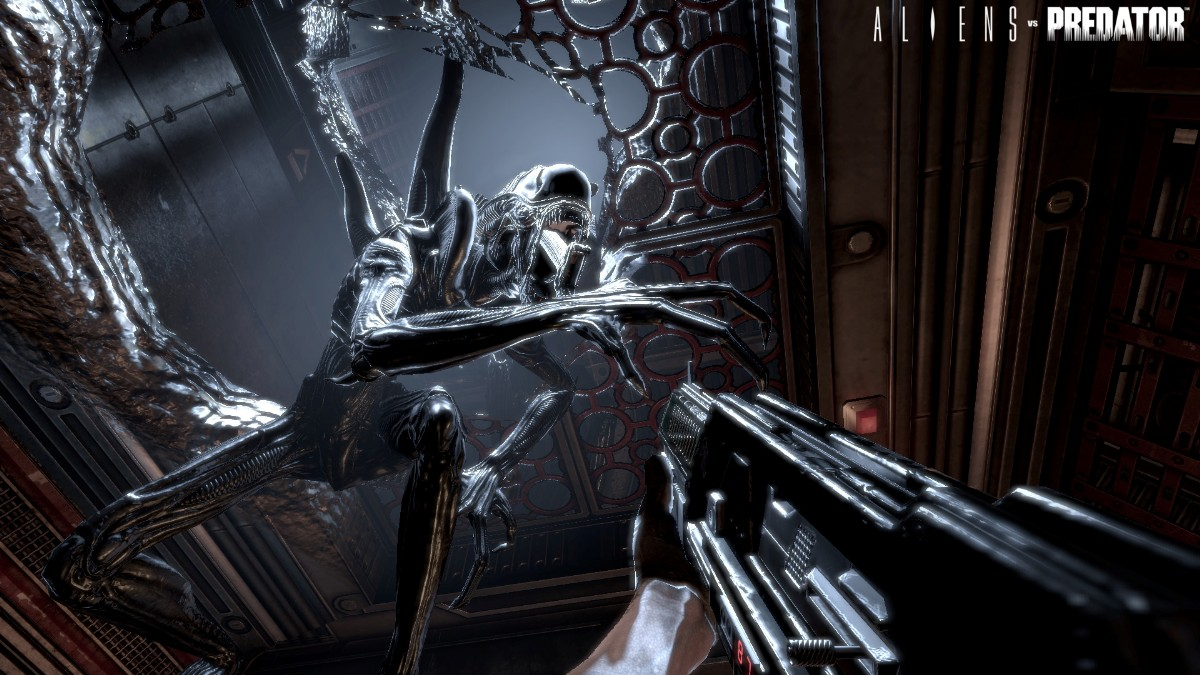 screen4 large Alien Vs Predator Gold Edition [PC]