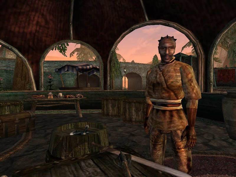 The Elder Scrolls IIIДревние Свитки 3