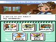 Screenshot of Animal Paradise (DS)